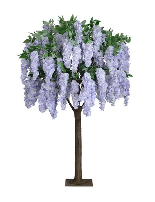 Wisteria Lavender