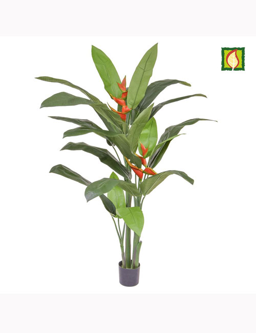 170cm Palm Heliconia