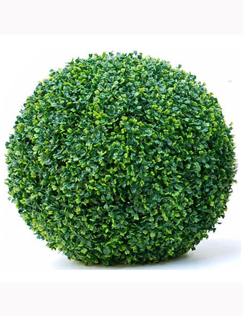 Boxwood Ball