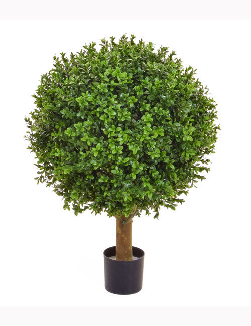 50cm Topiary Buxus Ball