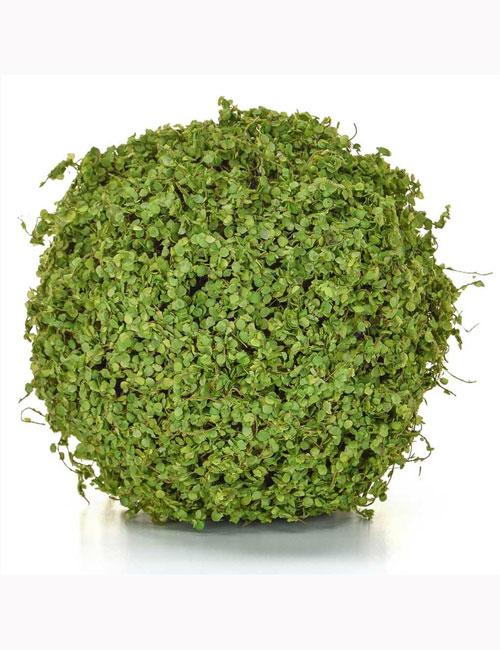 16cm Topiary Ball