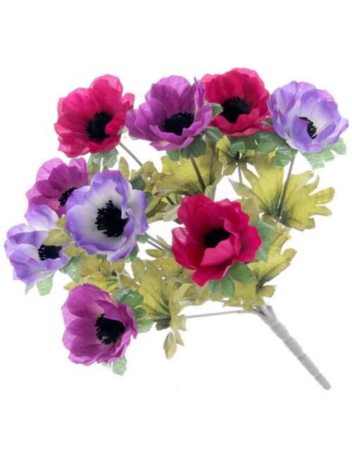 Anemone-Purple-Cerise-Plum